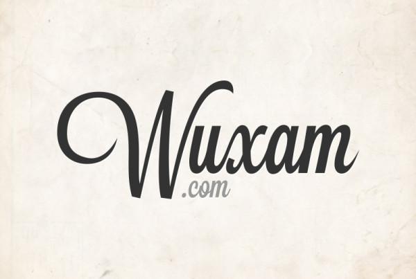 wuxam.com